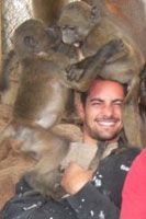 Volunteer Work at C.A.R.E. Baboon Sanctuary in South Africa | Hands-On Wildlife Experience