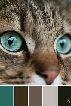 ZJ Color Palette 587 - No paint, no gain :) Color Schemes Colour Palettes, Colour Pallette, Color Palate, Color Combos, Brown Colour Palette, Design Seeds, Cat Colors, Colour Board, Color Stories