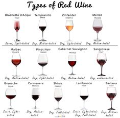 List of different types of popular red wines, their color, what to have them with and pictures Malbec Red Wine, Zinfandel Wine, Red Wines, Red Wine List, Best Red Wine, Types Of White Wine, Different Types Of Wine, Wine And Cheese Party, Wine Tasting Party
