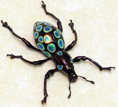 Real Rare Framed Metallic Polka Dot Weevil by REALBUTTERFLYGIFTS, $59.99