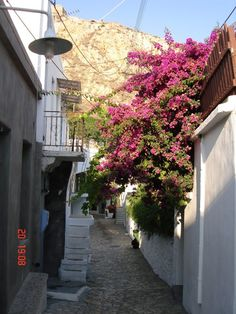 Skyros, Greece Zorba The Greek, Ultimate Travel, Greek Islands, Island Life, Planet Earth, Places Ive Been, Traveling By Yourself, Landscapes, To Go