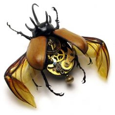 Real insects are fitted with antique watch parts to create fascinating works of steam punk art.