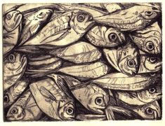 Kym Fulmer. Butterfish, Etching and aquatint