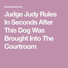 Judge Judy orders the dog to be brought into the courtroom. When the pup sees his rightful owner, he rushes toward them. Awesome Stories, Judge Judy, Bring It On, Dogs, Doggies, Pet Dogs, Dog