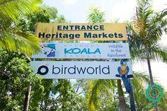 Kuranda Koala Gardens czyli jak przytulałam koalę.  #australia #kuranda #travel #podróże #koala