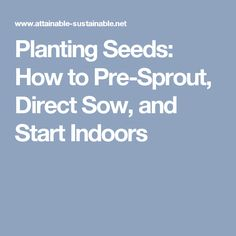 Planting Seeds: How to Pre-Sprout, Direct Sow, and Start Indoors