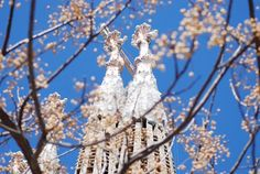 Top 10 Spring Events in Barcelona 2015 http://www.apartmentbarcelona.com/blog/2015/03/10/spring-events-barcelona-2015/