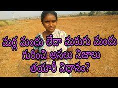 మర్ల మందు గురించి అసలు నిజాలు తయారీ విధానం? Marugu Mandu Preparation video - YouTube