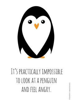 I feel inexplicably happy when I see a penguin Penguin Party, Penguin Love, Cute Penguins, Happy Penguin, Pinguin Drawing, Penguin Quotes, Penguin Tattoo, Antarctica, Illustrations