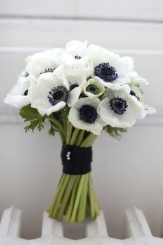 WHITE ANEMONE - Getting married in March? See our seasonal flowers board for a full list of flowers that are available for florists to buy in March for a Spring wedding. Whether you are planning a romantic, wild and natural bouquet or bright and vibrant table centrepieces - our month by month boards cover every possibility for every month be it Winter, Autumn or Summer! xx