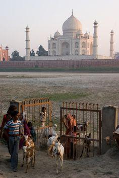 Taj Mahal . Agra