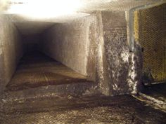 Mold in Heating and Air Conditioning Systems (HVAC)