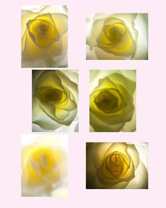 Glow Miniature's Collection Set of six 4X5 prints by LisaAmelia, $15.00