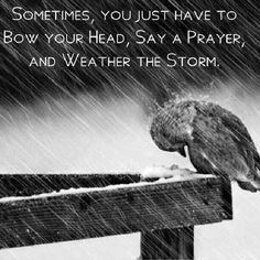 Say a prayer so you can weather the storm. We all have trials in life we just need to remember to pray and ask for the strength to carry on and learn what was needed through those trials in order to grow.