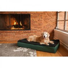 Super Orthopedic Lounge Pet Bed | Snoozer orthopedic products are designed to provide the comfort and support your aging pet needs. Orthopedic dog beds are the perfect place for our four-legged friends to relax and rejuvenate. Whether you are looking for Orthopedic Ramps, Cozy Caves, or Lounges our products help pets of any size get wherever they want to go. Shop SkyMall.com!