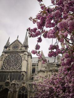 April in Paris by Lara Dalinsky