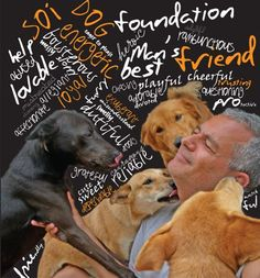 Soi Dog Foundation - Gill & John's Story.  One of my favorite organizations.  Please consider donating.
