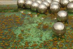 Narcissus Garden - Inhotim no Depósito Drops