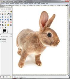 Le pixel art qui se traduit simplement par l'art du pixel, désigne la réalisation d'une composition numérique pixel par pixel, en utilisant un nombre limité de couleurs. Avec le logiciel gratuit The Gimp, vous allez pouvoir appliquer un effet qui se rapproche du Pixel Art à vos images.