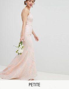 8b9b9d6a602 Chi Chi London Petite Bridal Premium Lace Maxi Dress with Fishtail Asos  Dress