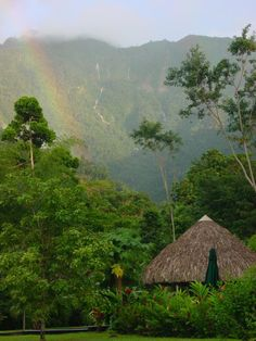 Pico Bonito, La Ceiba, Honduras - Explore the World with Travel Nerd Nici, one Country at a Time. http://travelnerdnici.com