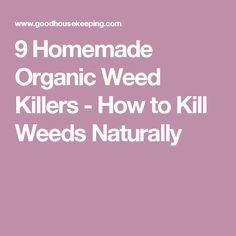 9 Homemade Organic Weed Killers - How to Kill Weeds Naturally