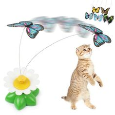 Funny Butterfly Cat Toy  Cat spent boring time at home lonely, high-quality playing toy can protect cat health.  Toys can avoid the cat from scratching furniture and floors, exercise cats paw, promote growth healthy for your cat.  Size:8*5.5cm  Power: AA battery needed( not include)  Color and design send by random!