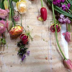 Bloemetjes.. #flowers #styling Dec 8, Outdoor Living, Instagram Posts, Green, Plants, Outdoor Life, Plant, The Great Outdoors, Outdoors