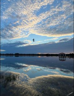 College Park Orlando, Reflection Photos, Florida Beaches, Rivers, Lakes, Airplane View, Birds, Beautiful, Nature