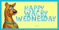 Happy Wacky Wednesday | Happy Wacky Wednesday