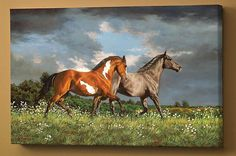 This stunning canvas print features two horses walking over a meadow. Comes ready to hang and is the perfect way to liven up a wall in your home or cabin. The wrapped canvas design gives a unique and Wildlife Paintings, Animal Paintings, Horse Paintings, All The Pretty Horses, Beautiful Horses, Horse Drawings, Animal Drawings, Cowboy Art, White Horses