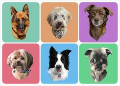 Hello!  I can illustrate your pet or any animal you need into vector art that you want! The cost for one pet or animal Please provide high quality photos for get the best result  All packages include colorful artwork with high quality detailed.  All artwork with a transparent background, but if you want to use a simple background like an example, I will give you free.  Let me know if you want that 2-3 or more animals will be imagined on the same portrait together, custom background or… Wild Animals Pictures, Animal Pictures, Custom Dog Portraits, Pet Portraits, Animals Beautiful, Cute Animals, Pet Fox, Animal Paintings, Animal Photography