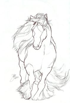 Horse Drawings | ... off in the form of a gypsy vanner my first successful horse drawing d