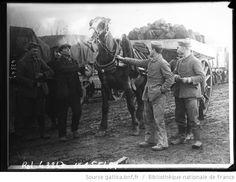 Prisonniers de guerre allemands près d'Aldershot, arrivée de charbon pour les feux de camp [cheval tirant un chariot rempli de charbon] : [photographie de presse] / [Agence Rol] - 1
