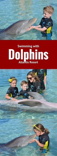 Swimming with dolphins was on my bucket list for years and something my children dreamed of doing too. We had the chance to have an amazing family encounter while visiting Atlantis Resort on Paradise Island in the Bahamas. It was INCREDIBLE! Totally something everyone should experience once in a lifetime if you are a water lover and dolphin lover.