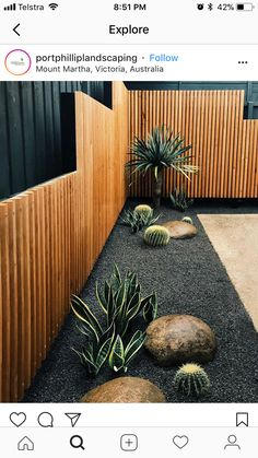 Cacti in gray gravel with smooth boulders at edge of desert garden