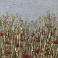 Golden Wheat and Poppies  / Jo Butcher