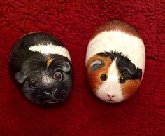 Painted pebble Guinea pig
