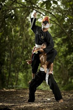 Pencak Silat is martial art from Indonesia