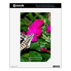 Moth Feeding on Pink Flower NOOK Color Decal