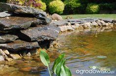 Moja codzienność - ogród Oli - strona 3 - Forum ogrodnicze - Ogrodowisko