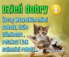 Dzień dobry. Życzę wszystkim miłej soboty, dużo uśmiechu, relaksu i jak najmniej roboty... #sobota Polish Language, Messages, Signs, Animals, Polish, Pictures, Animales, Animaux, Shop Signs