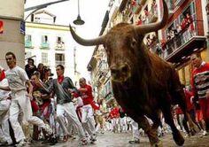 San Fermin: corrida de toros : ¡Basta de torturar toros!  Cada año, miles de visitantes de todo el mundo llegan a Pamplona, España, para ser parte de los Encierros de San Fermín. Sin embargo, los turistas suelen quedar horrorizados al ver a los animales aterrorizados mientras tratan de huir de la muchedumbre borracha que les grita, golpea y jala. Los toros resbalan en las calles empedradas y húmedas, y se azotan contra las paredes con gran fuerza. Muchas veces