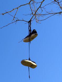 Si los árboles diesen zapatos.