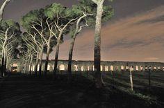 Roma - Parco degli Acquedotti
