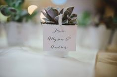 Wedding Favours Expert Tips For Giving The Best Gifts Succulent Wedding Favors, Best Wedding Favors, Unique Gifts, Best Gifts, Asian Party, Cheap Favors, Simple Baby Shower, Giving, Party Favors