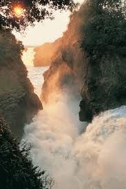 Murchison falls - possibly the world's most powerful waterfall