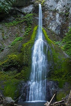The adventure continues in Washington road trip itinerary with days if you missed Days catch up here. This post contains our Olympic National Park road trip itinerary. Washington Nationals Park, Washington State, Places To See, Places To Travel, Evergreen State, Park Pictures, Beautiful Waterfalls, Beautiful Landscapes, Pacific Northwest