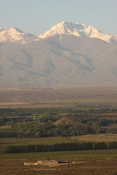Valle de Tupungato, Mendoza, Arg.