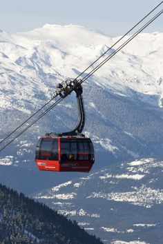 The PEAK 2 PEAK Gondola is an amazing experience indeed. The views are just breathtaking!  Photo: Bruce Rowles  #CDNGetaway